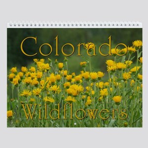 Colorado Wildflowers Vol 2 Wall Calendar